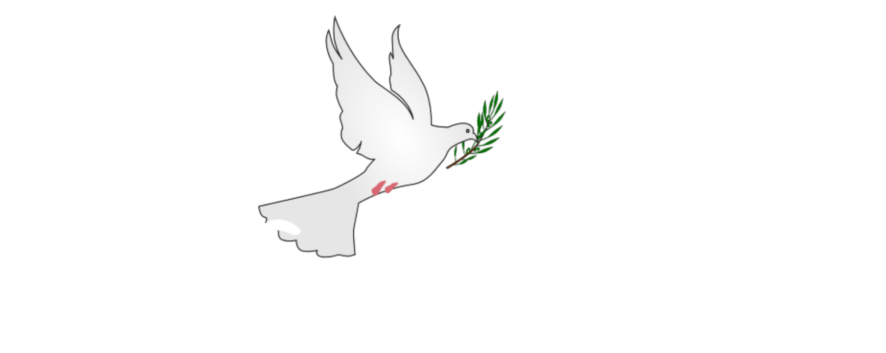 Oasis Consulting